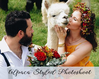 Styled Elopement Photoshoot: Red & Yellow in Grosse Ile
