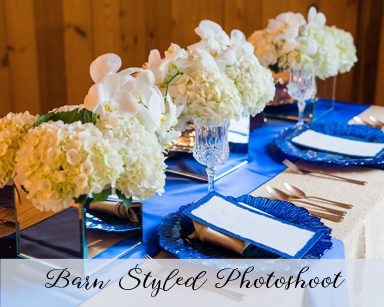 Styled Wedding Photoshoot: Royal Blue & Gold in Clarkston, Michigan